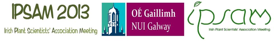 Logos of IPSAM and NUI Galway